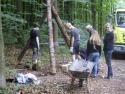 Holzbestimmung 2